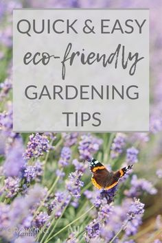 Want to make your garden more eco-friendly? This sustainable gardening guide has lots of easy environmentally friendly gardening tips for greener gardening. Compost Bags, Gardening Supplies, Gardening Tips, Plant Pests, Sustainable Gardening, Plant Labels, Plant Supports, Garden Equipment