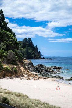 Photo Diary: The Coromandel (NZ)