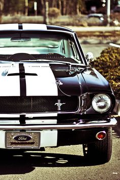 15 Eerie Pictures Of A Classic Car Grave. - Muscle cars, car, musclecar, mustang with racing stripes, classic hot car. i am in love with mustang - Hot Cars, Sexy Cars, Dream Cars, My Dream Car, Muscle Cars Vintage, Vintage Cars, Luxury Sports Cars, Classic Mustang, Mustang Cars