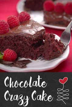 Chocolate Crazy Cake | Prepare yourself. This one-pot chocolate cake is indeed crazy— for the BEST reasons. No Bowls. No eggs. No milk. No butter or dairy of any kind. Just simple ingredients, easy clean-up, and delicious fudgy taste. Watch to see how this delectable dessert is made, then give it a try!