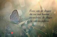 Soms zijn de dingen die we niet kunnen veranderen, de dingen die ons veranderen.