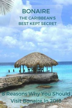 Bonaire The Caribbean's Best Kept Secret.  The beautiful island of Bonaire is a divers paradise, but it's so much more than that - diverse landscape greets visitors to this unspoiled paradise, peaceful and some of the best snorkeling in the Caribbean. #Bonaire #Caribbean #ABCIslands