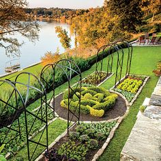 Create a knot by weaving two kinds of box in a pattern. What a great idea for the center of a vegetable garden too! Elegant Boxwood Garden - Landscaping with Boxwoods - Southern Living Backyard Retreat, Boxwood Garden, Raised Garden Beds Diy Vegetables, Backyard Landscaping, Boxwood Landscaping, Garden Trellis, Landscape, Southern Garden, Amazing Gardens