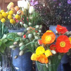 Flower mart, Oakland ca