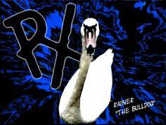 Rainer 'THE BULDOG' by R-EvolutionX on DeviantArt