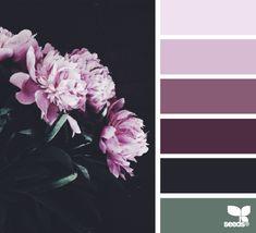 Flora Tones - http://design-seeds.com/home/entry/flora-tones80