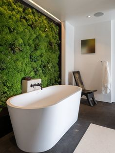 Live wall with moss; modern, rustic, green bathroom - need