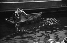 Fishermen hauling in their net, (Photo by James Crookall, via Vancouver Archives) Tall Ships, Sailors, Boats, Management, History, City, Image, Ships, Historia