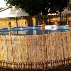 Bamboo Fencing Around Pool Google Search Backyard Pool