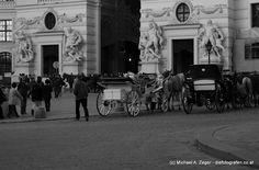RÖMISCH   Unweit der römischen Ausgrabungen am Michaelerplatz reihen sich auch hier Fiaker hinter Fiaker. Vienna, Street View, Walking, Pictures, February, Walks, Hiking
