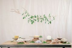 Honey of a Thousand Flowers - Natural Minimalist wedding (Salt Lake City, UT) (P