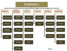 Antibiotic families