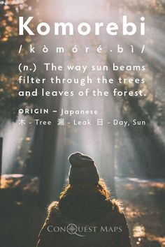 Komorebi The Way Sun Beams Filter Through The Trees And Leaves
