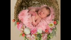 Arkansas Newborn Photographer - Hardgrave Photography Ivory