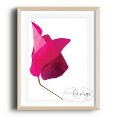 Lola & George - Blush Print Printed on quality silk card. Available in or size. Unframed - any frames and/or additional items shown in product photos not included. A3 Size, Plant Decor, A5, Frames, Blush, Silk, Printed, Cards, Photos