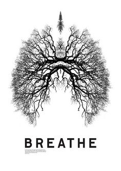 We are all connected #spiritually #breathe