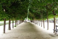 The Gardens of the Palais Royal /Jardin du Palais Royal | by shannonrossalbers