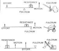 Resultado de imagen para types of levers