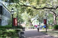 Round 3 semifinalist Emily Thelin's photo of the College of Charleston's charming campus setting.