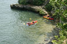 Kayakers tuck into a cove, Gibraltar Island, Ohio