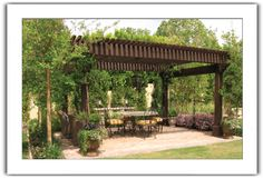 If the half the yard and grill area can be covered with vine and pottery barn outdoor lights