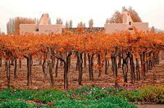 Cavas Wine Lodge, da rede Relais & Châteaux.Argentina