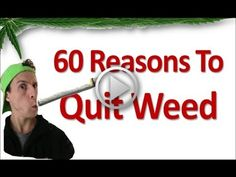 60 Reasons To Quit Marijuana - Some people will say they only smoke for fun and that they are not addicted. While most long time users report they smoke because of their cravings for marijuana, and that they are addicted. However, it's true that marijuana is addictive, both physically and emotionally.