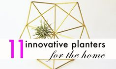 If we could fill our homes and offices to the brim with greenery we totally would (and believe me, we've tried). So this year, we've sought out the best botanical innovations.