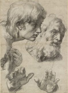 Raphael, The Heads and Hands of Two Apostles (ca. 1519-20). Courtesy of Ashmolean Museum, University of Oxford.