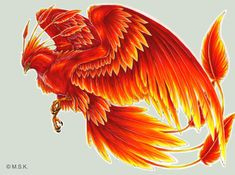 Phoenix+Bird+Drawings | 30 beautiful phoenix artworks, 3d and oil paintings for inspiration.