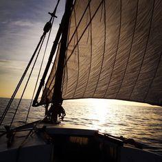 #Photo by @sebasduch #ametllademar #ametllamar #terresdelebre #tarragona #catalunya #catalogne #cataluña #catalonia #pesca #fishing #pêche #platja #playa #plage #beach #estiu #verano #été #summer #sun #vacances #vacaciones #holiday #traveling #viajes #travel #visit #eatheword #vamosdeviaje #voyage #escapadas #experiences #traveller #food #gastronomia #gastronomy # happyholidays #mediterrani #mediterraneo #mediterranean #visiting #vacation #trip #tourism #tourist #reservadelabiosfera