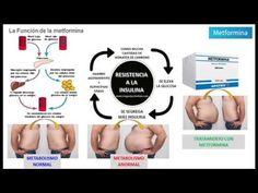 metformina para apearse de inquietud dosis recomendada de metformina