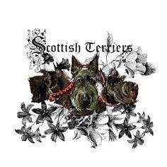 Scottish Terrier Floral