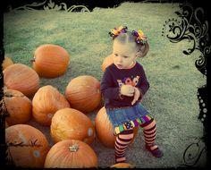 Pumpkin Patch Perfect!