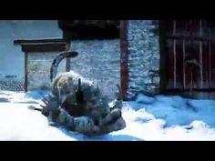 Far Cry 4 - gameplay