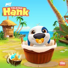 Aww! How cute is #TalkingHank, you guys?! Don't you just wanna pick him up and give him a cuddle? I know I do! Hank needs your love! xo, Talking Angela #TalkingAngela #MyTalkingAngela #TalkingHank #MyTalkingHank #TalkingFriends #TalkingTomandFriends #Hawaii #tropical #islands #cute #LittleKitties