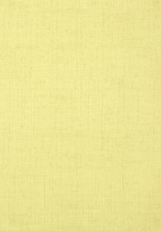 BANKUN RAFFIA, Apple Green, T14142, Collection Texture Resource 4 from Thibaut