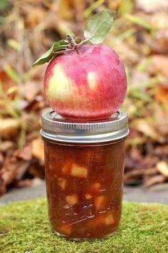 Apple Rhubarb Chutney by Eve Fox, Garden of Eating Apple Chutney, Cranberry Chutney, Tomato Chutney, Easy Chutney Recipe, Chutney Recipes, Relish Recipes, Jam Recipes, Dessert Recipes, Canning Tips