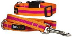 Fab Dog Stripe Collar & Leash Set