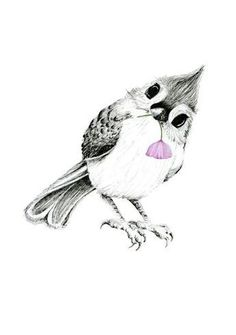 10 Cutest Bird Tattoos For Women - # For # Cutest # Birds . - 10 cutest bird tattoos for women # sweetest # birds - Bird Tattoos For Women, Tiny Bird Tattoos, Cute Tattoos, Body Art Tattoos, Drawing Tattoos, Tattoo Women, Blue Bird Tattoos, Blue Jay Tattoo, Feather Tattoos