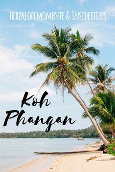 Koh Phangan ist nicht nur zum Feiern gut, für mich ist es die schönste Insel Thailands. Und ja, wir mochten die Full-Moon-Party mit Elektrosounds und Leuchtfarben bei Vollmond, aber verliebt haben wir uns beim Rollerfahren. Oder war es in der Hängematte mit Blick auf den Palmenstrand? Hier kommen meine Tipps für ein paar paradiesische Tage auf der Trauminsel. Koh Phangan, Places To Travel, Travel Destinations, Places To Visit, Bangkok, Thailand Island Hopping, Places Around The World, Around The Worlds, Koh Samui Thailand