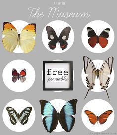 A Trip to the Museum Wall Decor. Freebie printables to make your own! Find them here: http://www.bhg.com/blogs/better-homes-and-gardens-style-blog/2012/06/28/diy-ify-a-trip-to-the-museum/