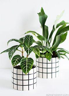 DIY Window Pane Plaid Planters