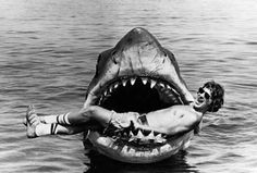 Jaws (1975) director Steven Spielberg. Love this.
