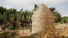 Dorze Chencha  - Ethiopia - Woven Bamboo House (18)