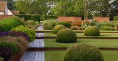 runde buchsbaum sträuche gartenbau gehweg gartenpflanzen stauden