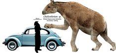 Chalicotherium.jpg (1024×468)