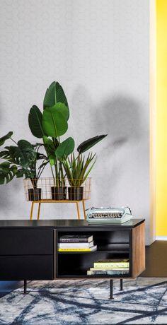 Dressoir Plain: een trendy, zwarte lage kast bij Trendhopper van designer Monika Mulder voor Tenzo. Geheel volgens Scandinavisch design. | zwarte tv kast, zwarte lage tv kast, tv kast woonkamer zwart, modulaire kast, woonkamer scandinavisch, tv meubel zwart, woonkamer, studeerkamer, dressoir zwart.