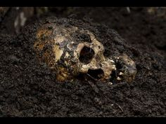 60 Minutes Australia - 25 June 2017 Inside the body farm: Where scientists and detectives go to learn about death.