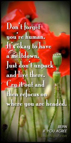Don't forget wise inspirational cry wisdom inspiration pinterest pinterest quotes you're human refocus